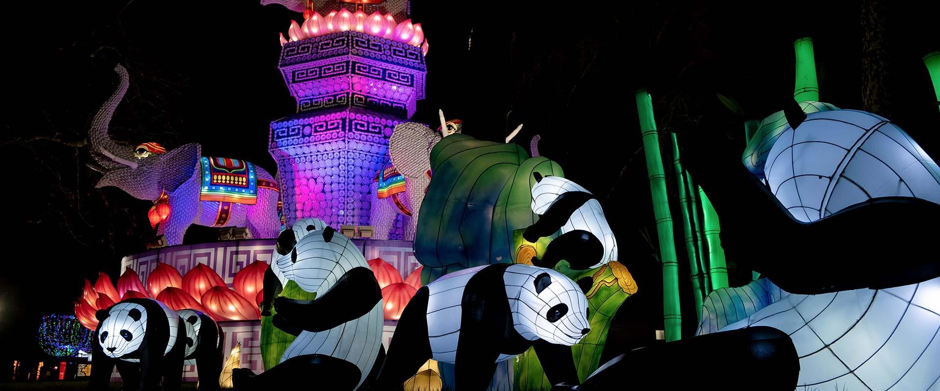 Le festival des Lanternes Blagnac