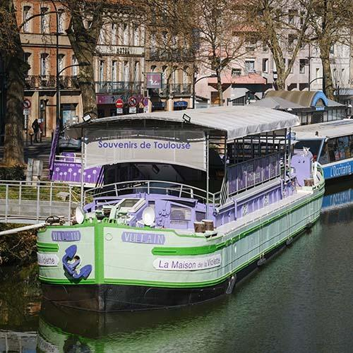 Souvenirs de Toulouse - violettes et pastel