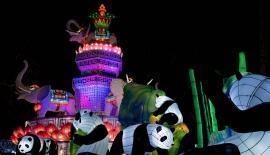 Le festival des Lanternes Blagnac - Toulouse Métropole